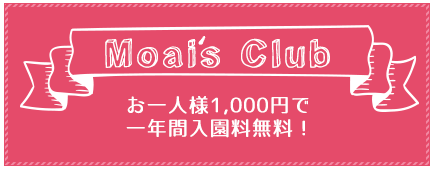 Moais Club お一人様1,000円で一年間入園料無料!